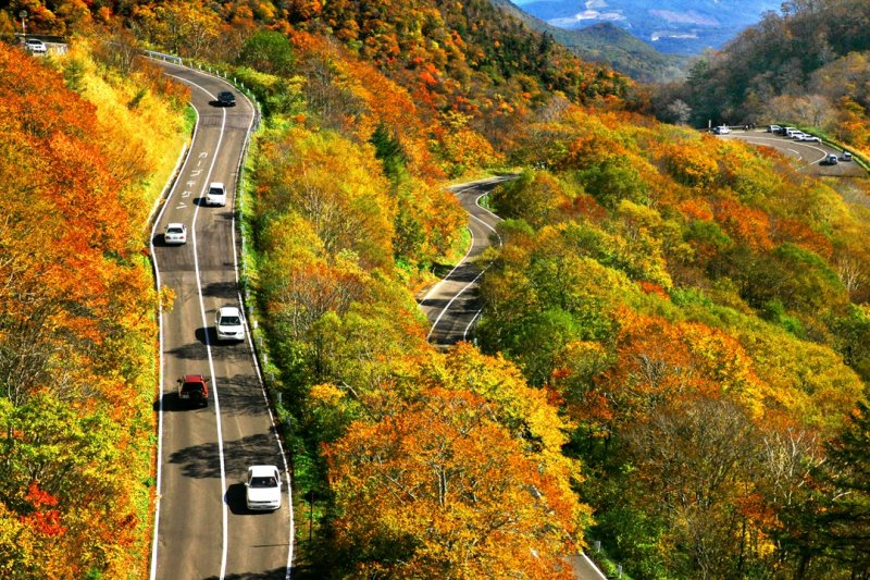 ~ Colored leaves of Aizu and 100 waterfalls in Japan ~ Drive in the vibrant autumn leaves of nature and plateau walk